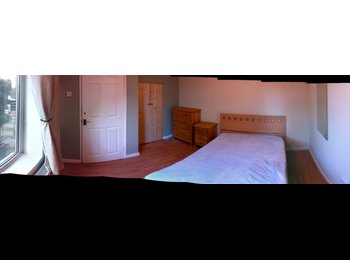 EasyRoommate UK - Room in shared student house near UEA - Earlham, Norwich and South Norfolk - £395 pcm