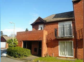 EasyRoommate UK - Very nice flat in Bicester - Bicester, Bicester - £575 pcm