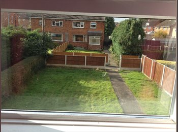 EasyRoommate UK - Meenas - Shrewsbury, Shrewsbury - £380 pcm