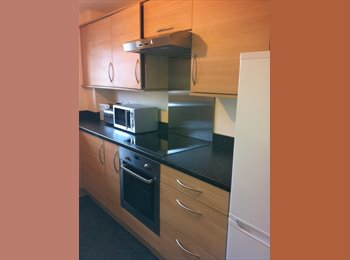 1 double room. New riverside apartment Profs. & students.