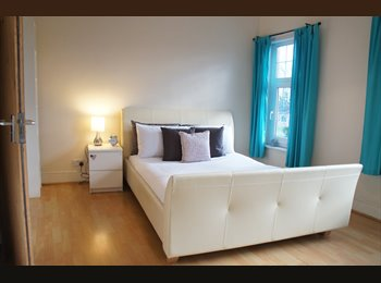 Professional or Serious Student House Share - £310