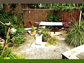 EasyRoommate UK - house renovated to high standard-- 2mins from university - Cathays, Cardiff - £350 pcm