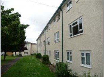 EasyRoommate UK - Double room available in Farnborough (weekday only) - Farnborough, Hart and Rushmoor - £315 pcm