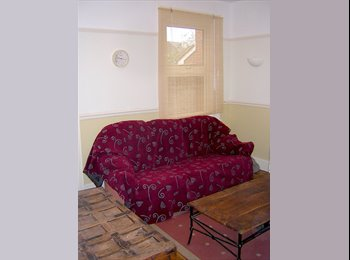 Friendly Graduate House Share 12 min walk to town centre