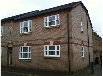 Double room in centrally located flat