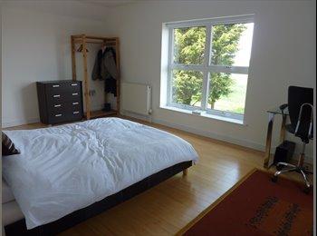 EasyRoommate UK - Large, double en-suite room, Maldon - £600 pcm