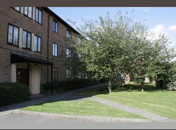 3 Bed flat with balcony and gardens £500 pcm