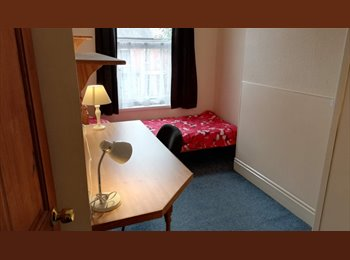 Student house in Earlsdon available for next academic year