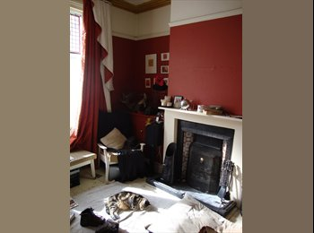 EasyRoommate UK - Comfy Double room in shared Home available - Loughborough, Loughborough - £300 pcm