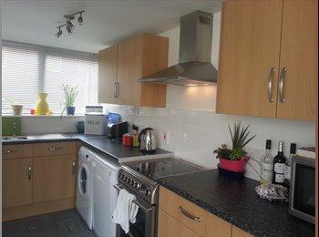 EasyRoommate UK - Singe room to let in professional household - Laindon, Basildon - £300 pcm