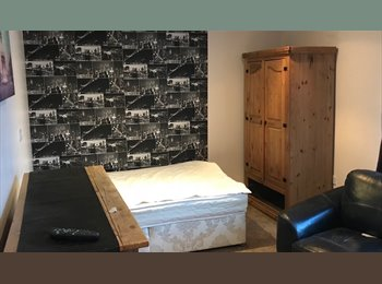Large single room to let town centre