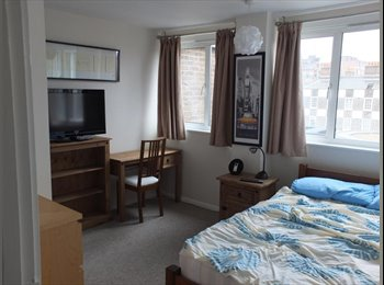 Spacious double room to rent in Pimlico/Westmnster