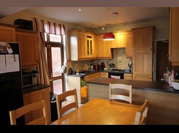 EasyRoommate UK - Lovely room with en-suite in excep house, Kingsway - £435 pcm