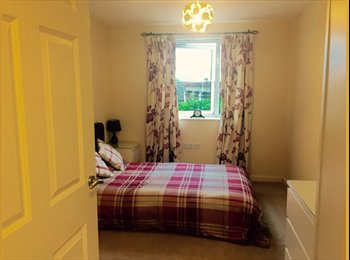 Large Ground a Floor Flat Double Room Furnished
