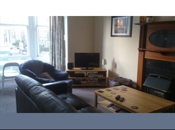 EasyRoommate UK - Friendly mixed professional flat, Bruntsfield - £367 pcm
