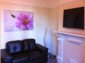 EasyRoommate UK - Perfect for young professional - Swansea, Swansea - £380 pcm