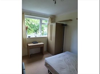 Bright dbl room in 2 bed flat. Bills incl.