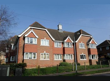 EasyRoommate UK - Furnished double room in modern flat near UEA - Earlham, Norwich and South Norfolk - £350 pcm