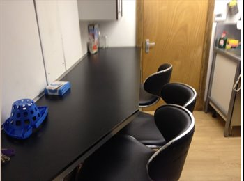 House share Coundon Professional or student
