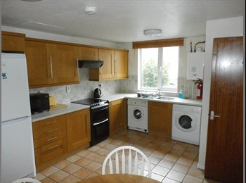 EasyRoommate UK - Large Single for Professionals in South Bretton - Peterborough, Peterborough - £320 pcm