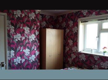 EasyRoommate UK - room to rent - Newbury, Newbury - £325 pcm