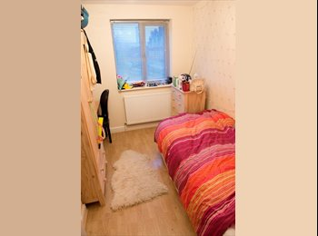 Single Room Available In Whitechapel Apartment