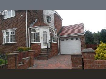 EasyRoommate UK - Immaculate house. Bills Included, Sunderland - £433 pcm