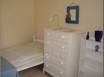 Clean, comfy room to Rent