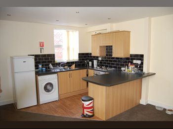 Room available in modern 2 bedroom apartment