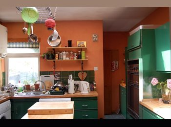 EasyRoommate UK - Lovely house to share, London - £600 pcm