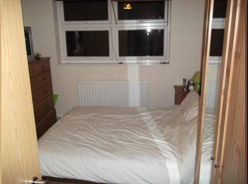 Double room for rent in great flat