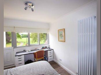 EasyRoommate UK - Studio Room to rent, en-suite, Botanic - £520 pcm