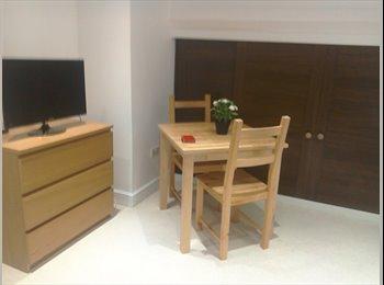 EasyRoommate UK - Bright Double Room & Studio Must be seen! - Tottenham, London - £780 pcm