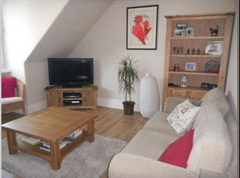 EasyRoommate UK - West End Room to Rent - Aberdeen, Aberdeen - £400 pcm