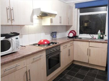 Looking for a flatmate to share a beautiful house!