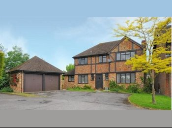 EasyRoommate UK - Central Hook - Large Detached house - Hook, Hart and Rushmoor - £425 pcm