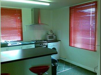 EasyRoommate UK - Windsor Apartment, large 3 bed flat share, Upperthorpe - £250 pcm
