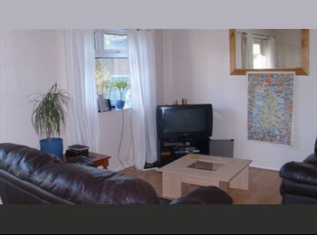 EasyRoommate UK - Double room in sensible student house - Fallowfield, Manchester - £325 pcm