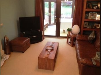 Good size double room in Willen close to the lake.