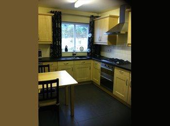 EasyRoommate UK - Warm, friendly house share. - Stourbridge Centre, Dudley - £350 pcm