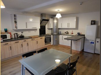 Large double room in flatshare to let