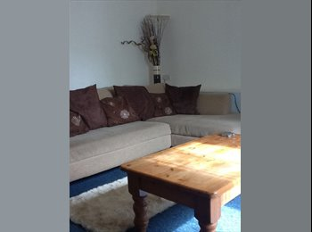 EasyRoommate UK - NOT JUST A ROOM - WHOLE BASEMENT - Torquay, Torquay - £600 pcm