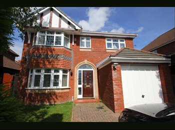 EasyRoommate UK - Executive 4 bedroom detached property in Penylan - Penylan, Cardiff - £495 pcm