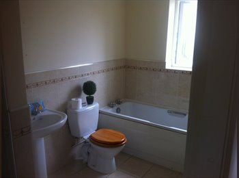 EasyRoommate UK - Double rooms in large 5 bed house - Chapeltown, Sheffield - £325 pcm