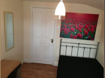 Newlyrefurbished 1rooms to let E17 walthamstow Ctl