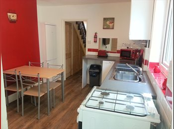 EasyRoommate UK - 4 Bedroom House for Rent in St Judes - St Judes, Plymouth - £390 pcm