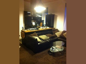 EasyRoommate UK - Good flat. - Stirling, Stirling - £500 pcm