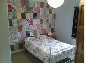 Double Room In Quirky House