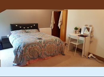 Spacious Double Room Avilable - Bills Included