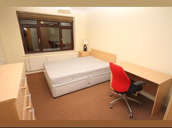 A spacious double bedroom to rent in Worcester